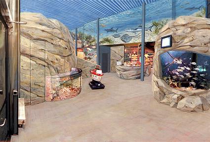 ... - Gestaltung Eingangsbereich Sea Life Centre Timmendorfer Strand